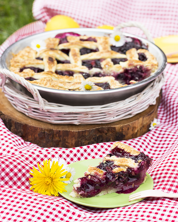 crostata ai mirtilli per un pic nic all'aria aperta